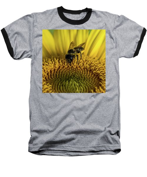 Baseball T-Shirt featuring the photograph Bee In A Sunflower by Paul Freidlund