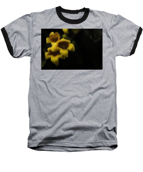 Bee In A Trumpet Baseball T-Shirt