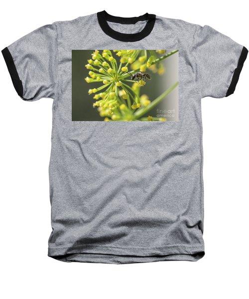 Bee Baseball T-Shirt by Jivko Nakev