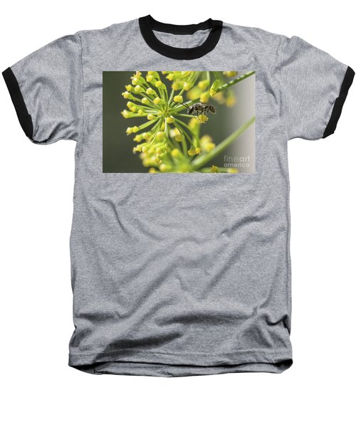 Bee Baseball T-Shirt
