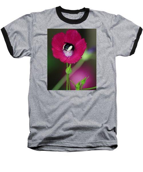 Bee My Guest Baseball T-Shirt