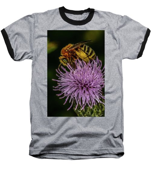 Baseball T-Shirt featuring the photograph Bee On A Thistle by Paul Freidlund