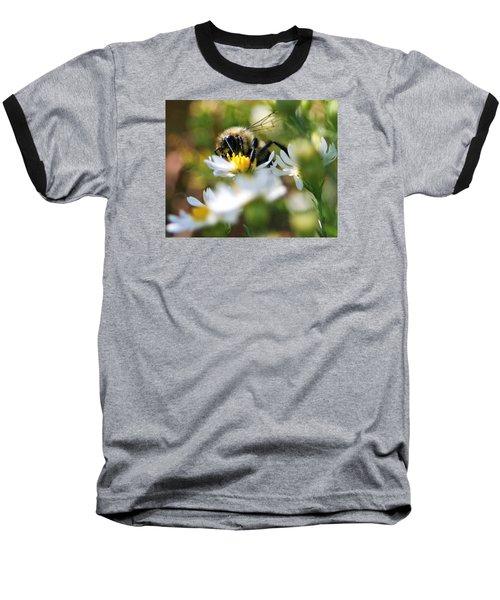 Bee On Aster Baseball T-Shirt
