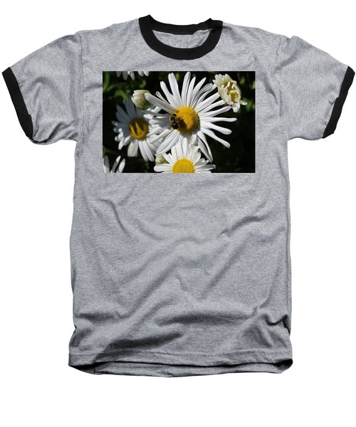 Bee On Flower 1 Baseball T-Shirt