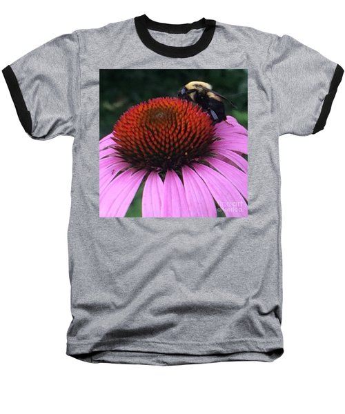Bee On Flower By Saribelle Rodriguez Baseball T-Shirt by Saribelle Rodriguez