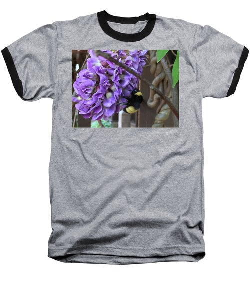 Bee On Native Wisteria Baseball T-Shirt