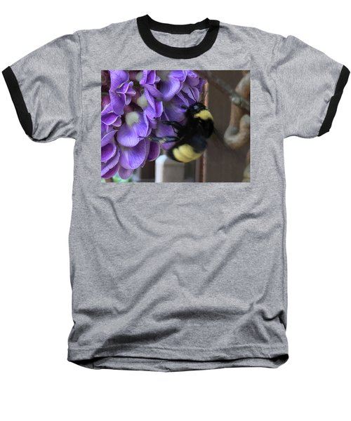 Bee On Native Wisteria I Baseball T-Shirt