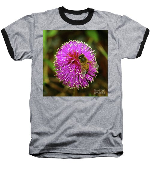 Bee On Puff Ball Baseball T-Shirt by Larry Nieland