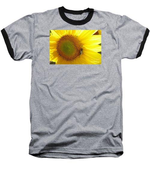 Baseball T-Shirt featuring the photograph Bee On Sunflower by Jean Bernard Roussilhe