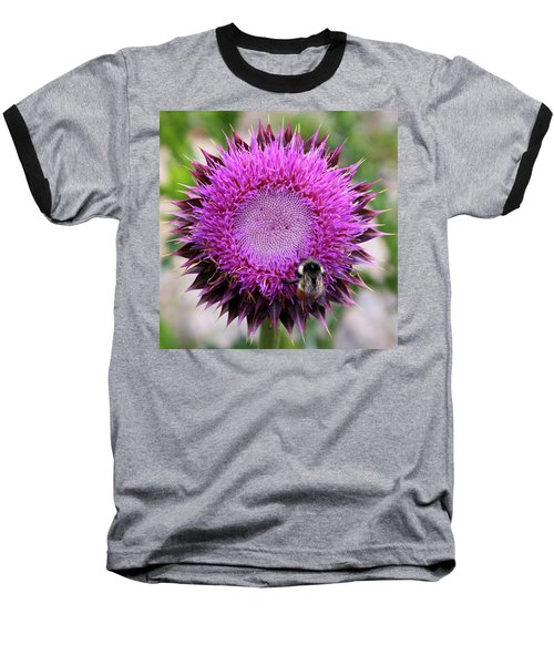 Bee On Thistle Baseball T-Shirt