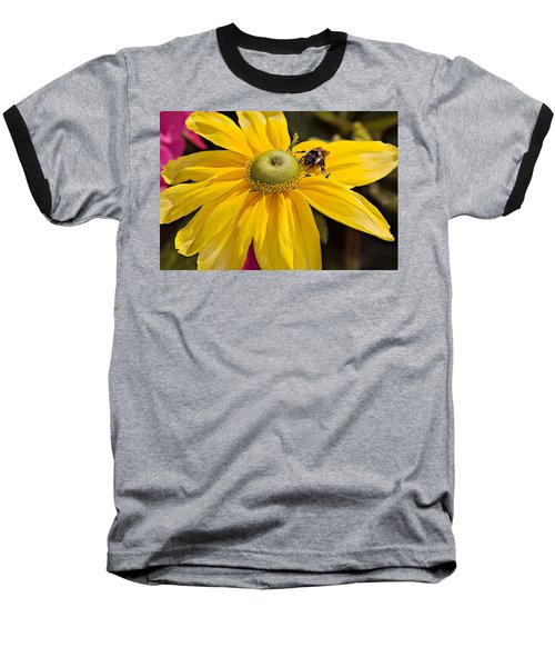 Baseball T-Shirt featuring the photograph Bee On Yellow Cosmo by Peter J Sucy