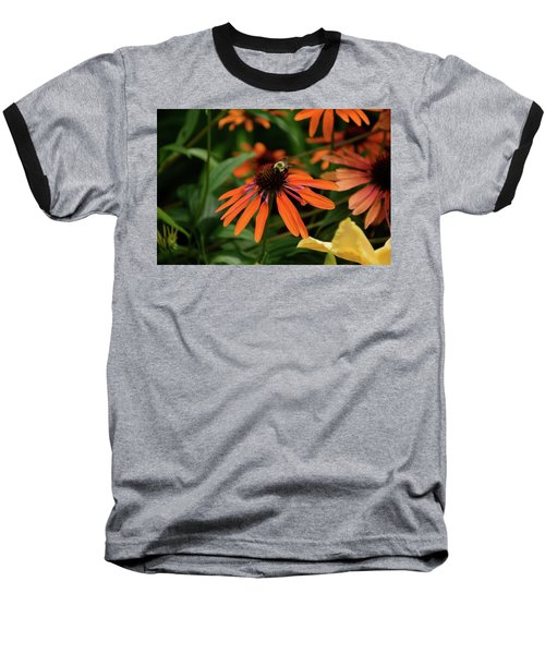 Bee Pollinating On A Cone Flower Baseball T-Shirt