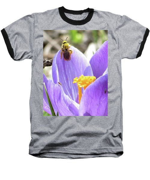 Bee Pollen Baseball T-Shirt