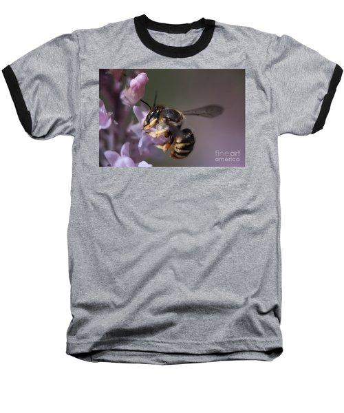 Bee Sipping Nectar Baseball T-Shirt