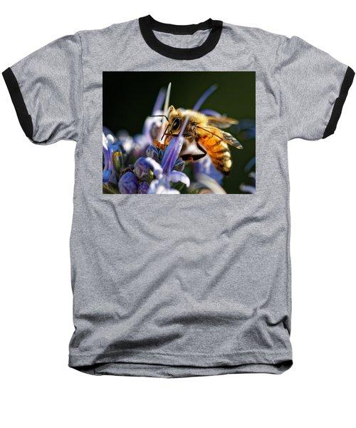 Bee Visits Rosemary  Baseball T-Shirt