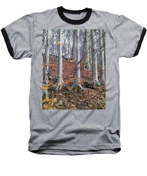 Beech Trees Baseball T-Shirt