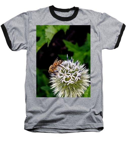 Beeing Seen Baseball T-Shirt