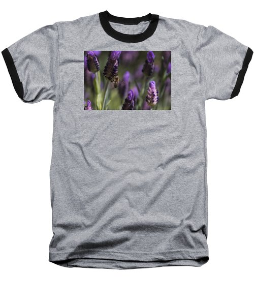Baseball T-Shirt featuring the photograph Bee's Delight by Laura Pratt
