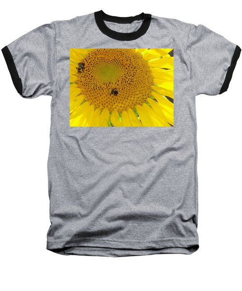 Baseball T-Shirt featuring the photograph Bees Share A Sunflower by Sandi OReilly