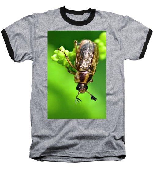 Beetle Baseball T-Shirt