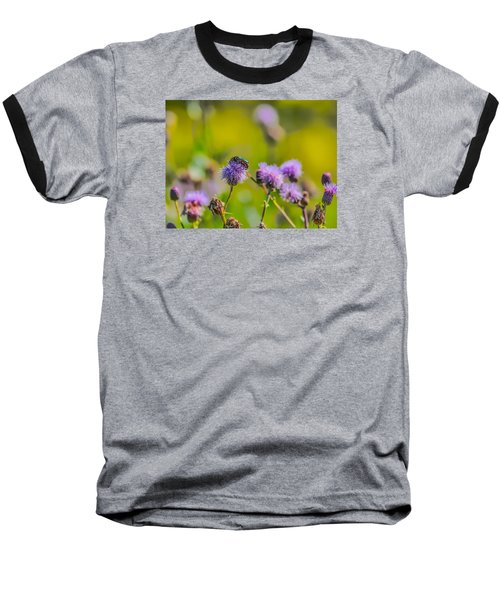 Baseball T-Shirt featuring the photograph Beetle by Leif Sohlman