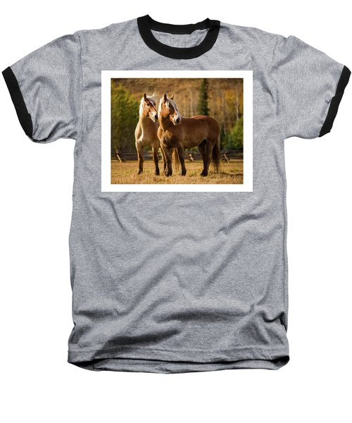 Belgian Draft Horses Baseball T-Shirt by Sharon Jones