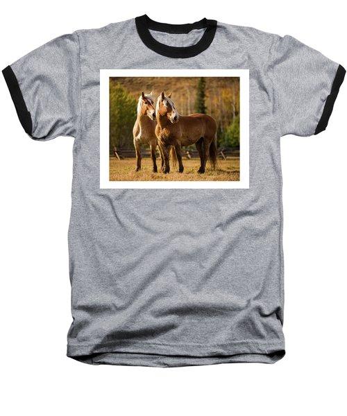 Belgian Draft Horses Baseball T-Shirt