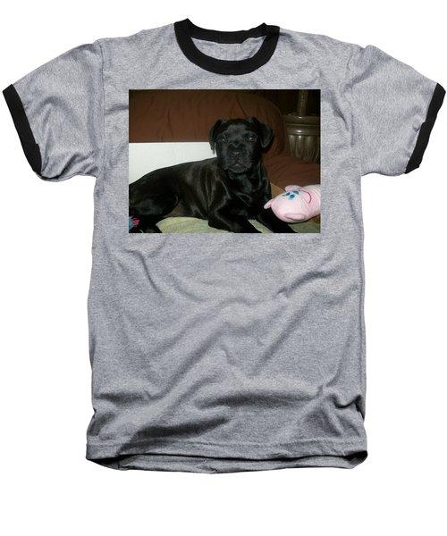 Baseball T-Shirt featuring the photograph Bella by Jewel Hengen
