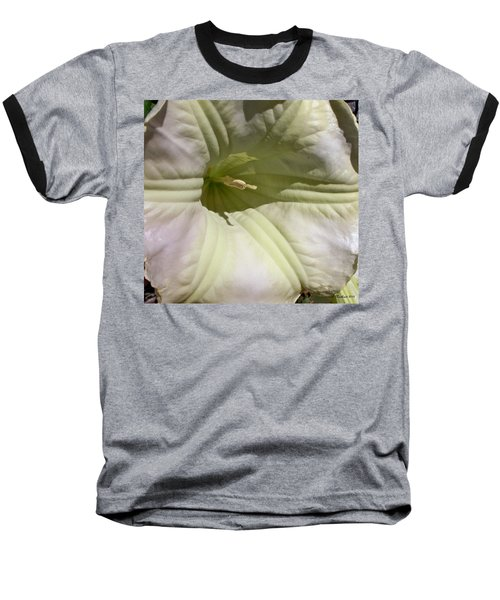 Baseball T-Shirt featuring the photograph Belle Of The Ball by Betty Northcutt