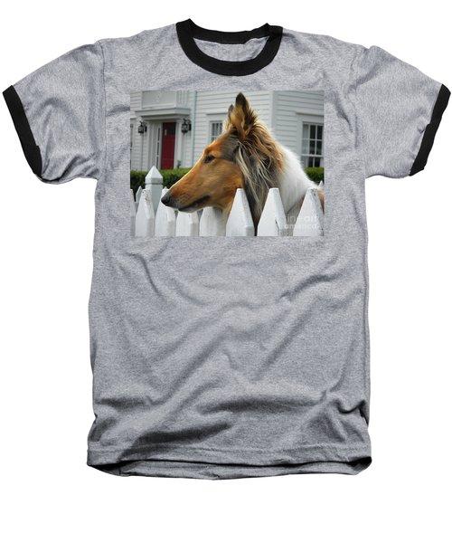 Bellingham Collie Baseball T-Shirt