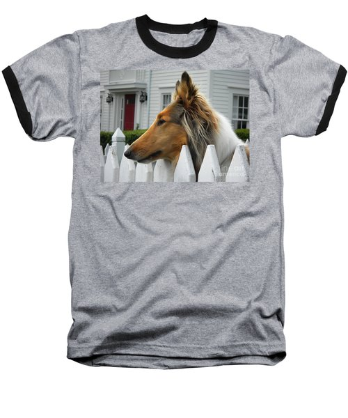 Bellingham Collie Baseball T-Shirt