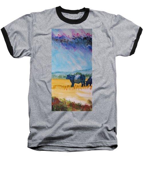 Belted Galloway Cows Narrow Painting Baseball T-Shirt