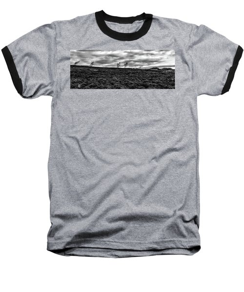 Bending To The Wind Baseball T-Shirt