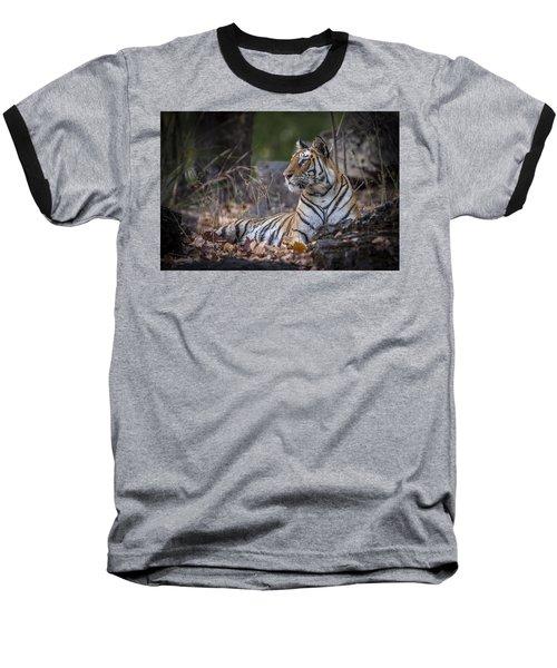 Bengal Tiger Baseball T-Shirt by Hitendra SINKAR
