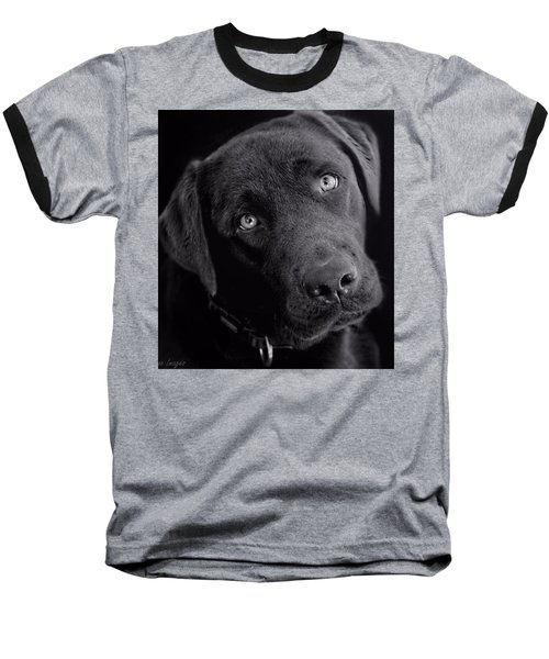 Baseball T-Shirt featuring the photograph Benji In Black And White by Wallaroo Images