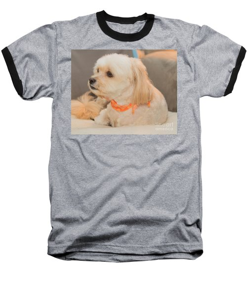 Benji On The Look Out Baseball T-Shirt