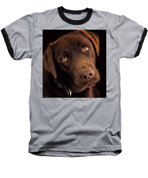 Benji Baseball T-Shirt by Wallaroo Images