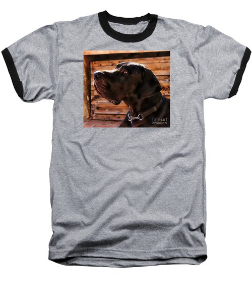 Benson Baseball T-Shirt by Clare Bevan