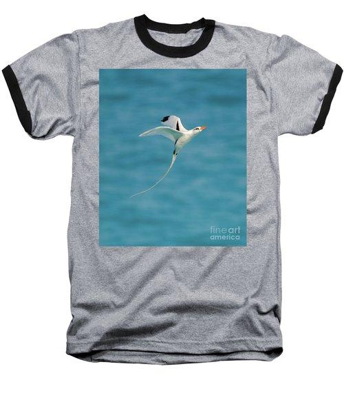 Bermuda Longtail S Curve Baseball T-Shirt