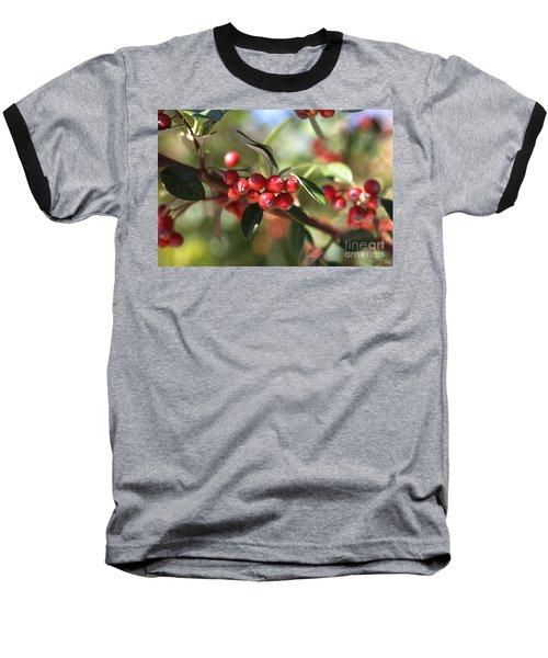 Berry Delight Baseball T-Shirt