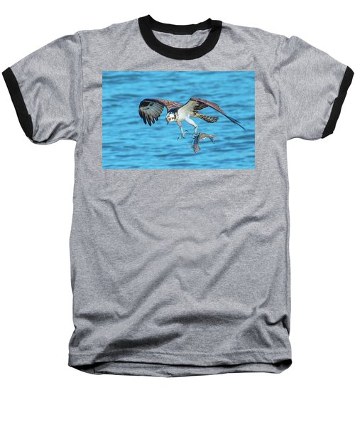 Best Osprey With Fish In One Talon Baseball T-Shirt by Jeff at JSJ Photography