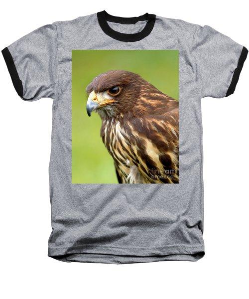 Beware The Predator Baseball T-Shirt