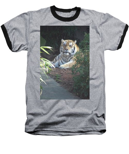 Baseball T-Shirt featuring the photograph Beyond The Branches by Laddie Halupa