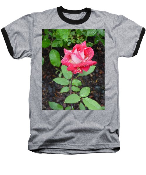 Bi-colored Rose In Rain Baseball T-Shirt