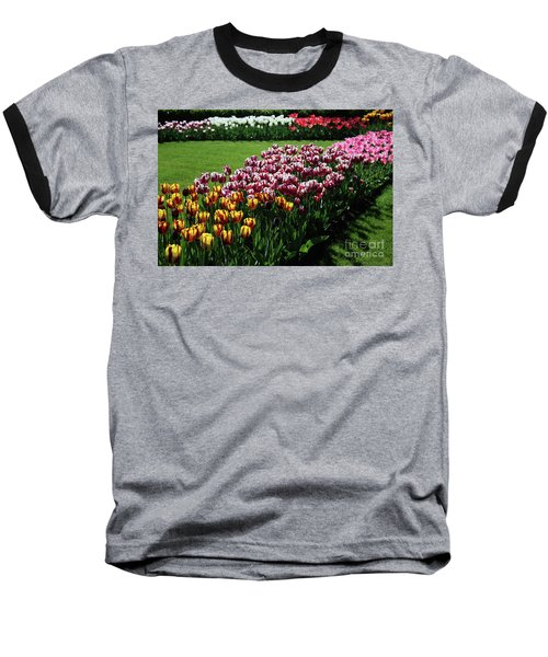 Multicolor Tulips Baseball T-Shirt by Ana Mireles