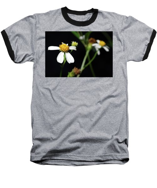 Bidens Alba Baseball T-Shirt by Richard Rizzo