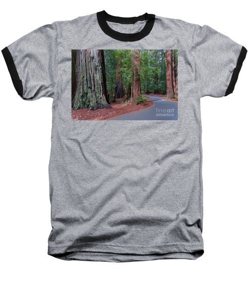 Big Basin Redwoods Baseball T-Shirt