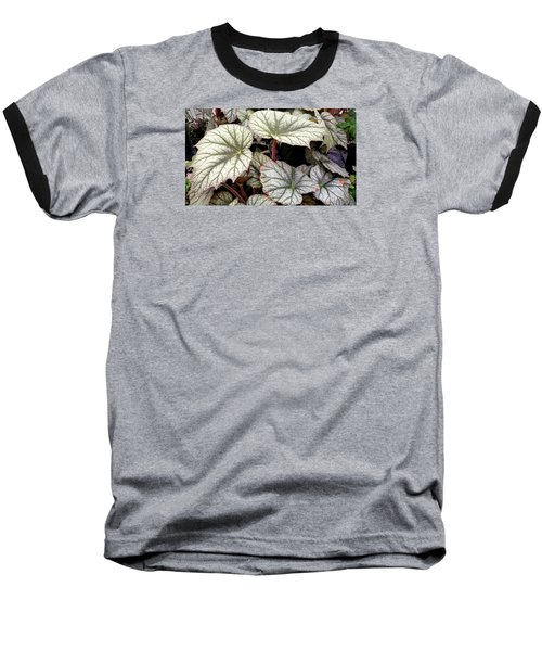 Big Begonia Leaves Baseball T-Shirt