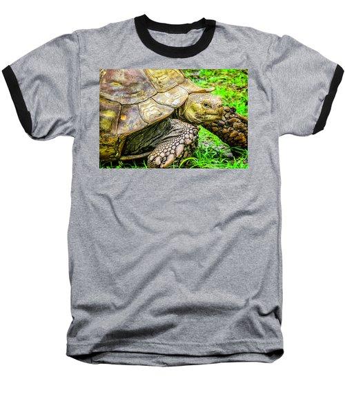 Big Boy Baseball T-Shirt