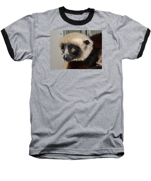 A Very Curious Sifaka Baseball T-Shirt